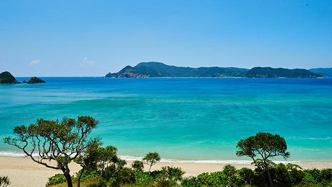 奄美大島の景色を見てマインドフルネスな状態になろう
