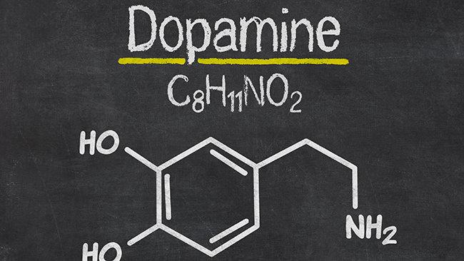 「Scientific Reports」掲載。ビタミンB1誘導体フルスルチアミンが健康の鍵である身体活動性を高めることが明らかに