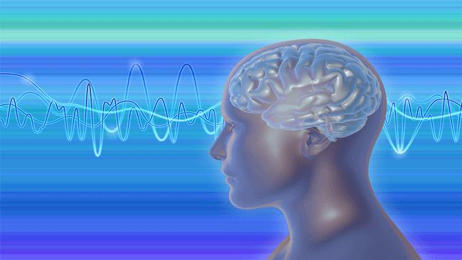 世界初!アルファ脳波の計測や評価法が学べる資格認定講座スタート