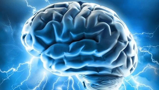 マインドフルネスと脳(前編)