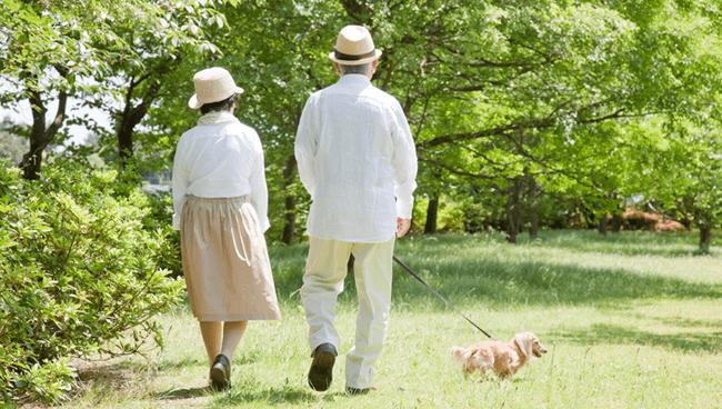 アスタキサンチンの力とは?お年寄りの筋肉や認知機能向上に加え、ネガティブ感情の改善も!