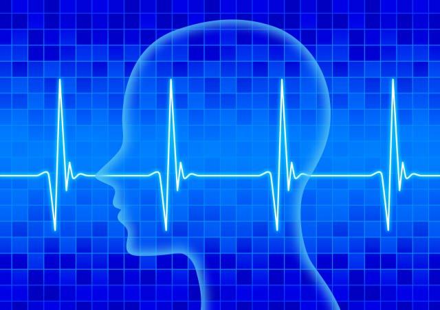 地肌ストレスは脳波と関係がある?