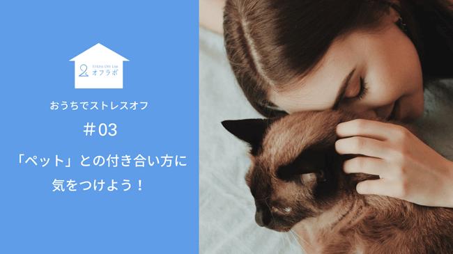 「ペット」との付き合い方に気をつけよう【#03 おうちでストレスオフ】