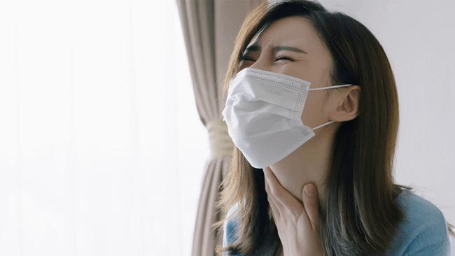 スギ花粉による軽度アレルギーに朗報?!乳酸菌B240の抗アレルギー作用を確認