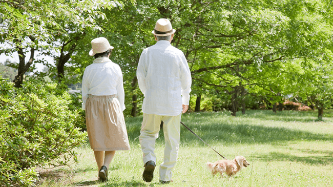 初孫世代…子どもとの連絡頻度が高い人、終活をしている人ほど幸福度が高い傾向に!